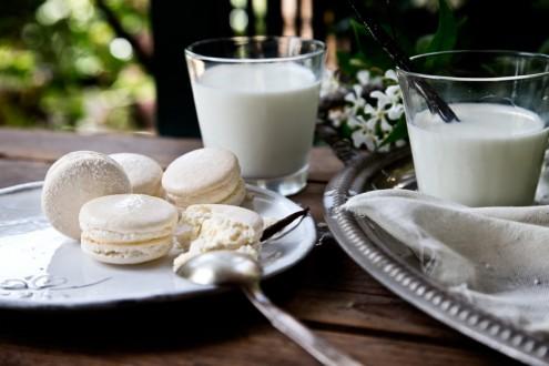 Macaron-vanilla+1