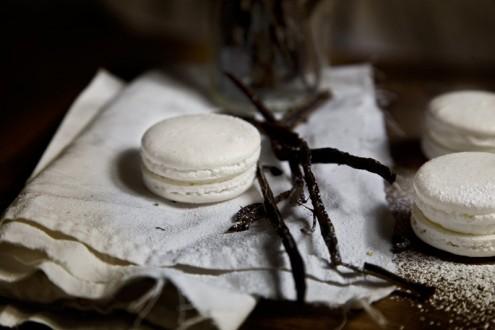 Macaron-vanilla-6